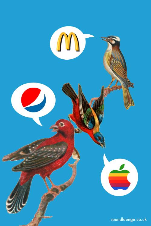 birdsong_sound_branding